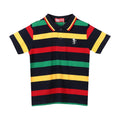 Casual Polo Shirt For Boys - Multi (BTS-015)