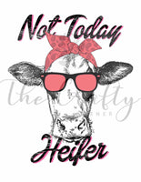 Not Today Heifer Transfer