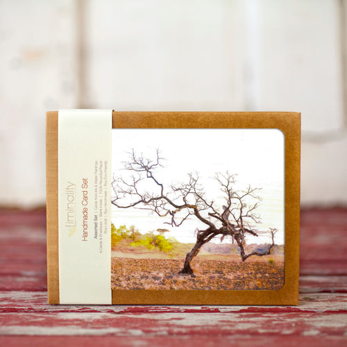 Lone Tree Greeting Card Set