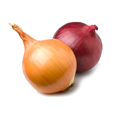 Branded Onions (100-Pack)