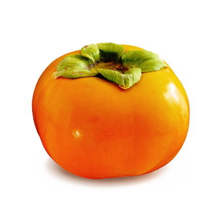 Branded Persimmon (100-Pack)  *Fall/Winter Only