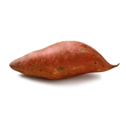 Branded Sweet Potato (100-Pack)