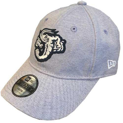 Jacksonville Jumbo Shrimp New Era Youth Logo Gleam 9Twenty