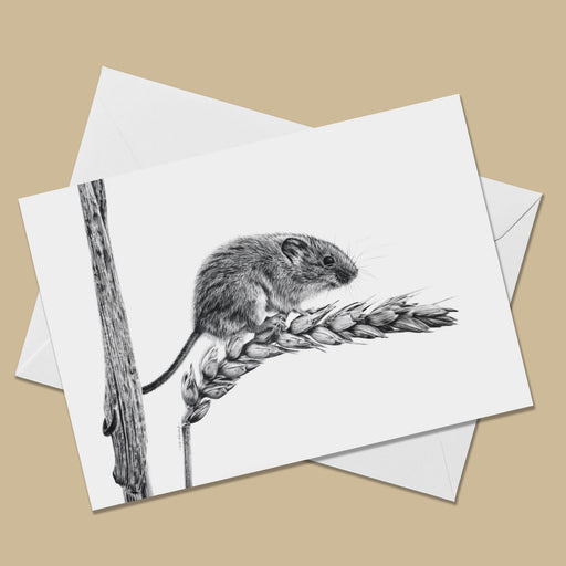 Harvest Mouse Greeting Card - The Thriving Wild