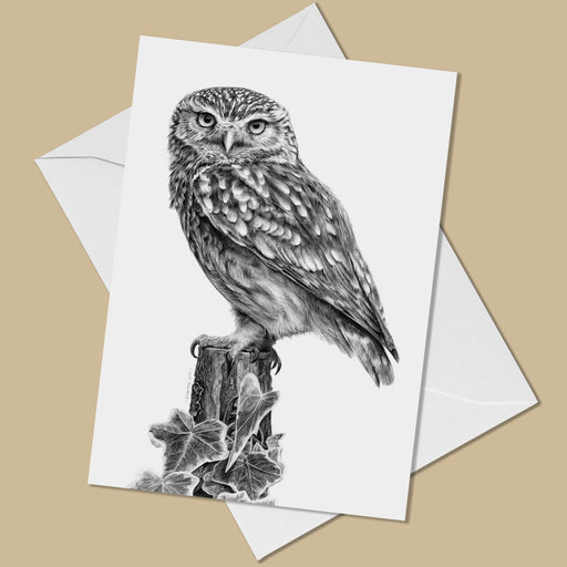 Little Owl Greeting Card - The Thriving Wild