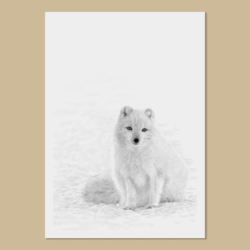Arctic Fox Art Prints - The Thriving Wild