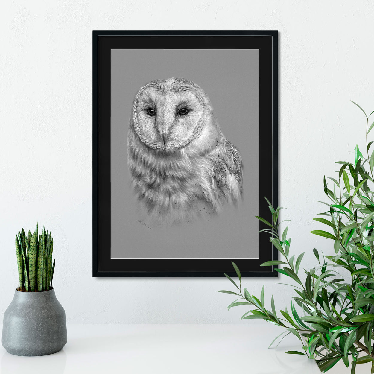 Barn Owl Art Framed On Wall - The Thriving Wild