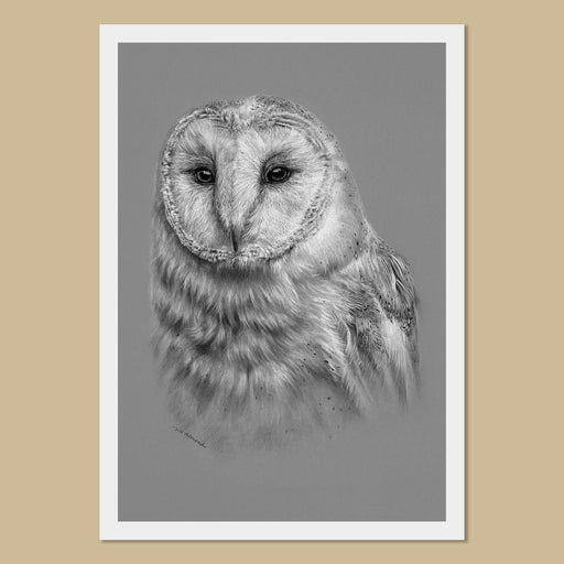 Barn Owl Art Prints - The Thriving Wild-