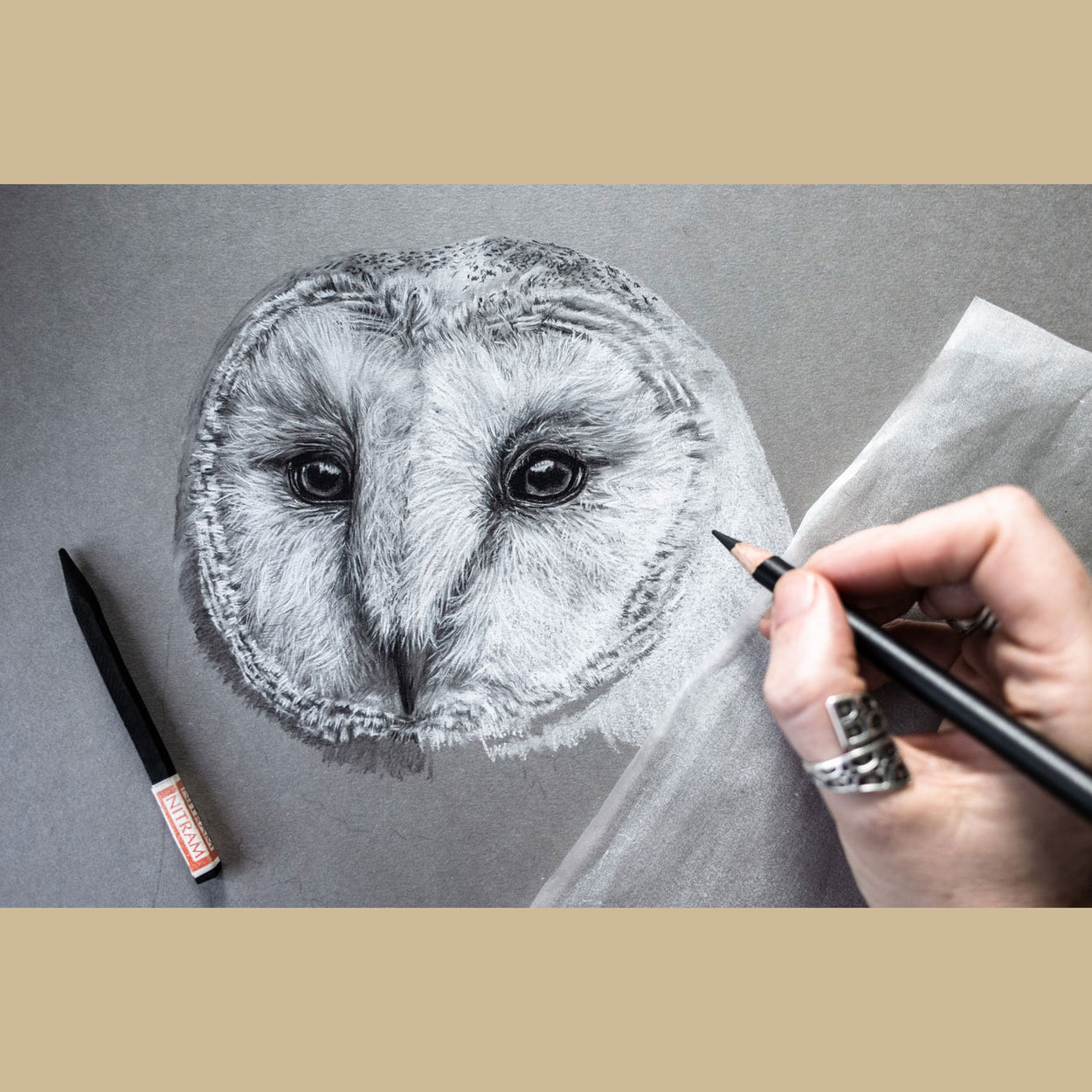 Barn Owl Charcoal Drawing in Progress - The Thriving Wild