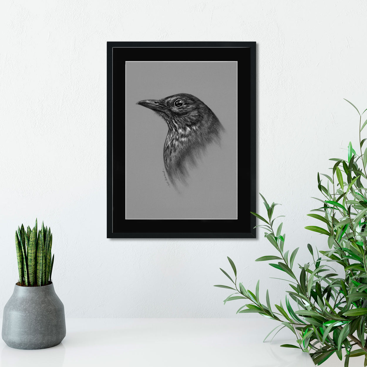 Blackbird Drawing on wall - The Thriving Wild