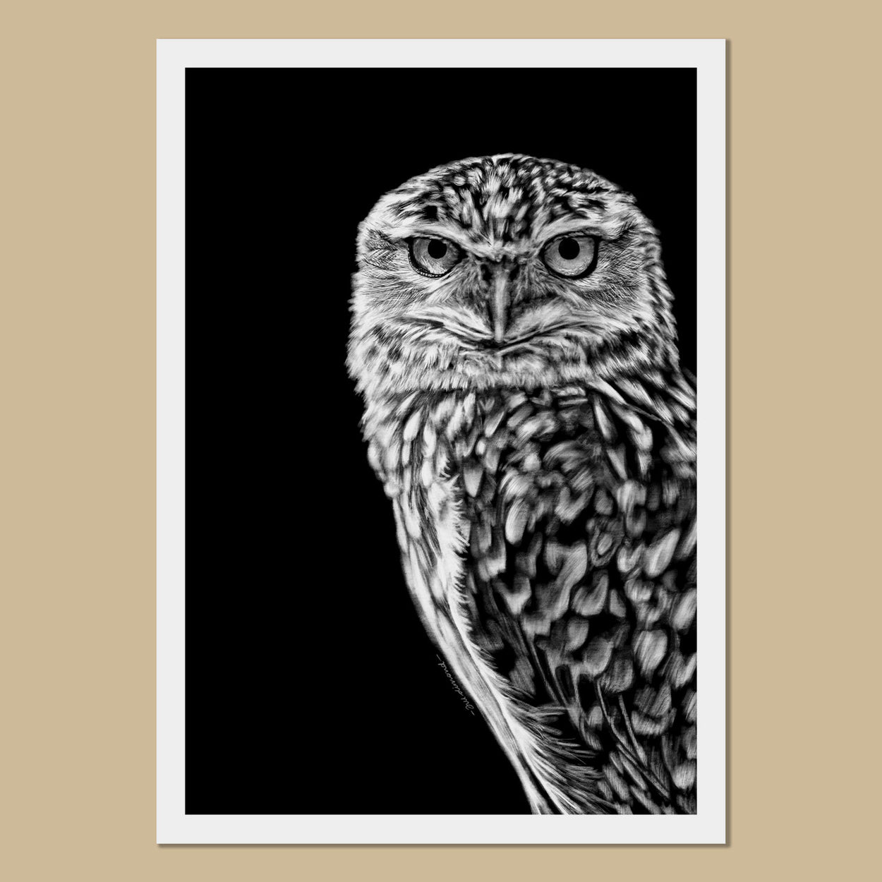 Burrowing Owl Art Prints - The Thriving Wild