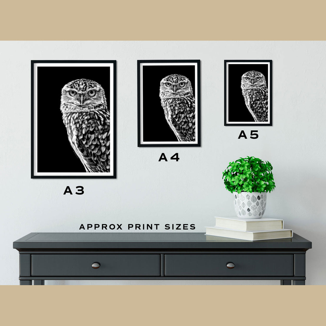Burrowing Owl Prints Size Comparison - The Thriving Wild