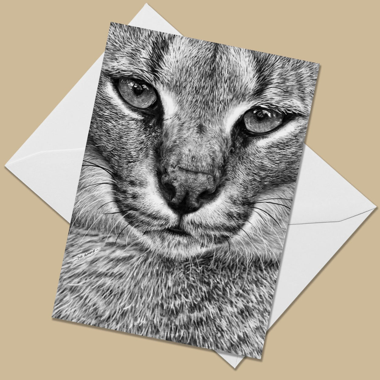 Caracal Greeting Card - The Thriving Wild