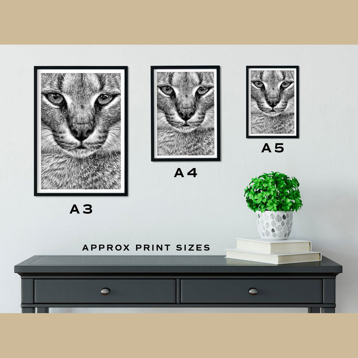 Caracal Prints Size Comparison - The Thriving Wild.jpg