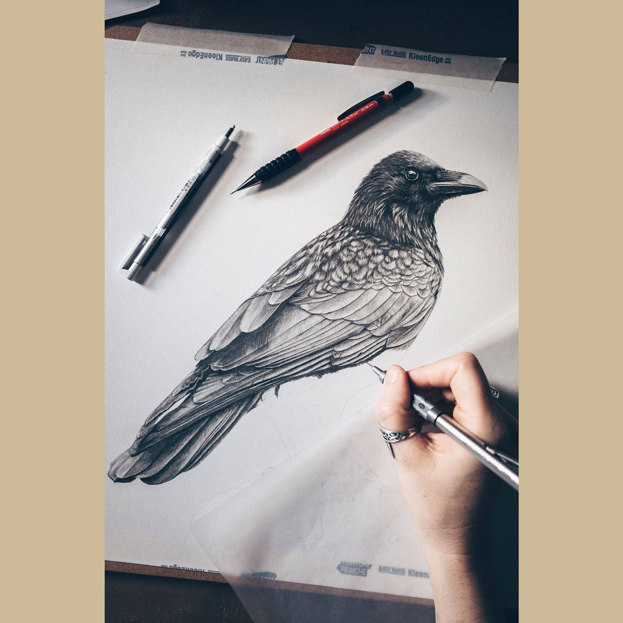 Crow Drawing In Progress - The Thriving Wild