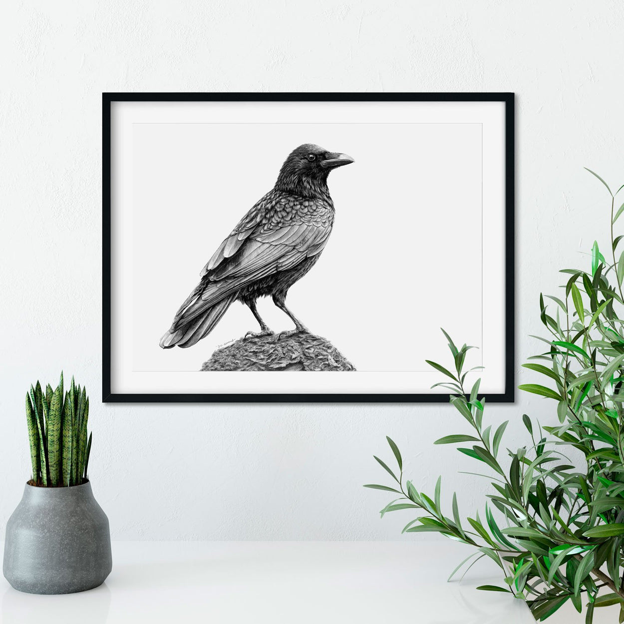 Crow Pencil Drawing on Wall - The Thriving Wild