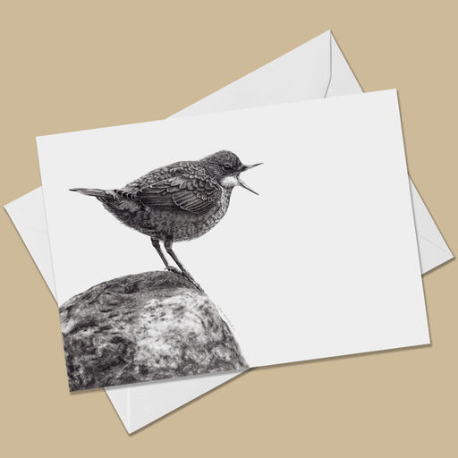 Dipper Greeting Card - The Thriving Wild