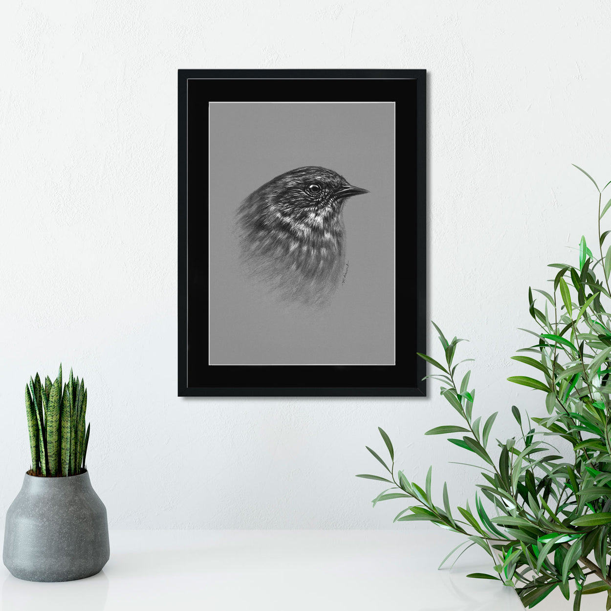 Dunnock Original Drawing on Wall - The Thriving Wild
