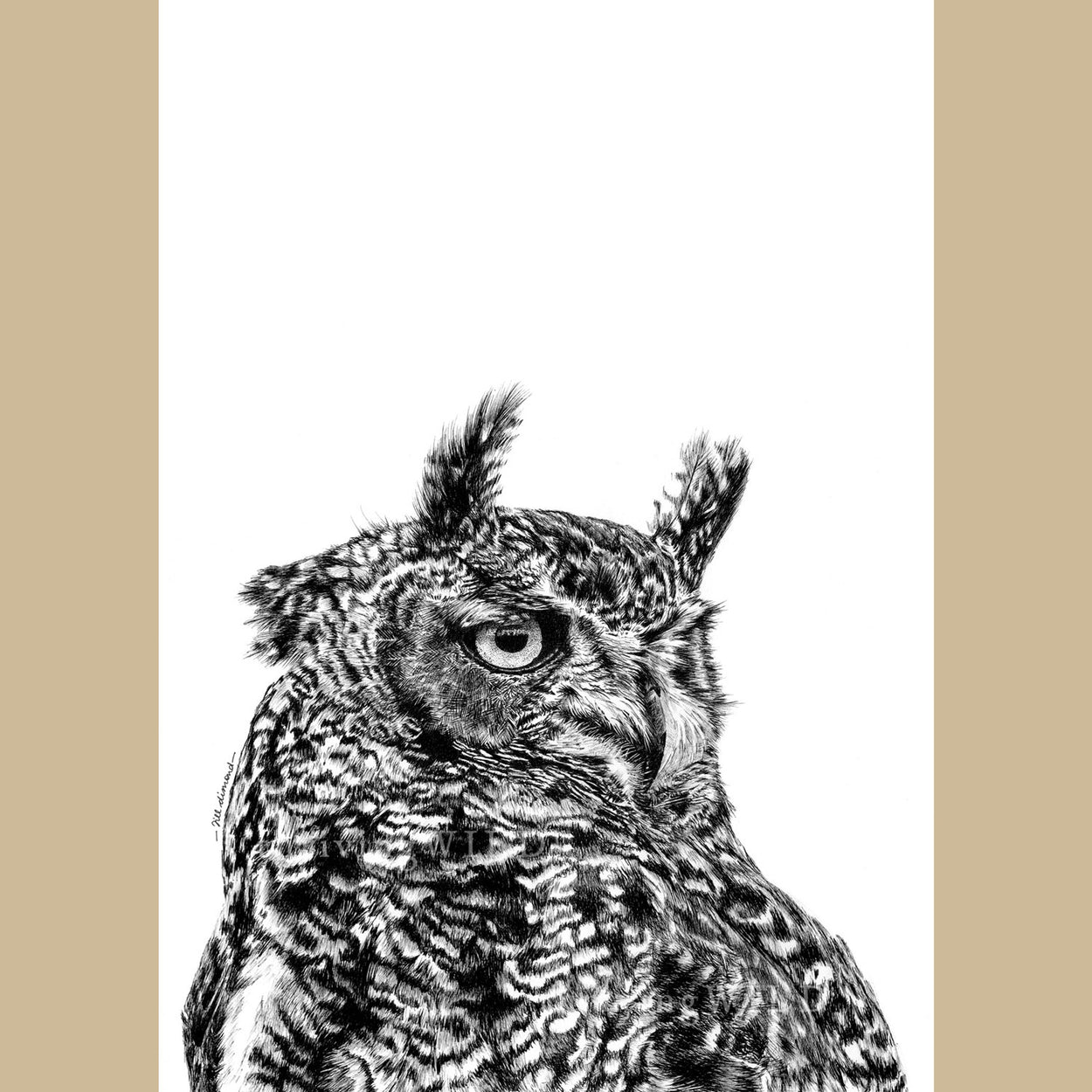 Eagle Owl Pen Drawing Bird of Prey - The Thriving Wild