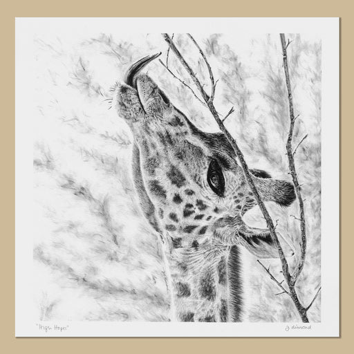 Giraffe Art Prints - The Thriving Wild
