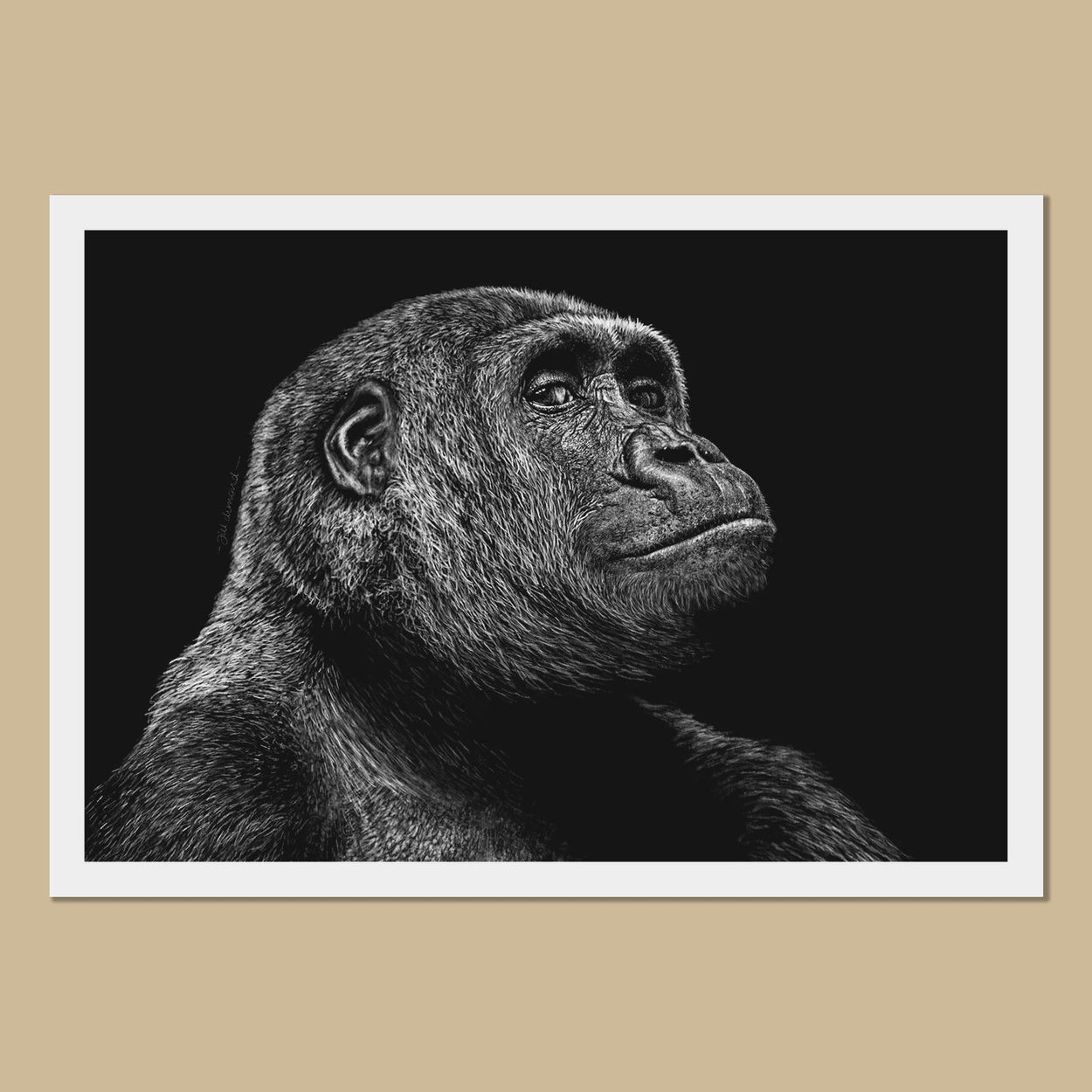 Gorilla Art Prints - The Thriving Wild