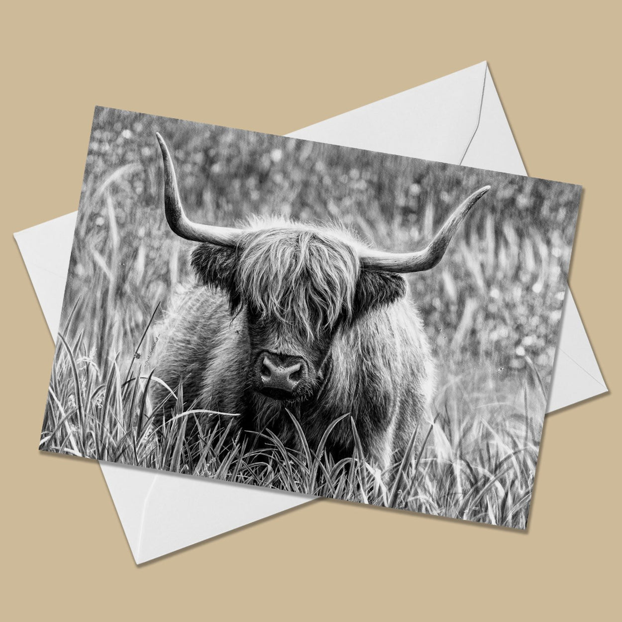Highland Cow Greeting Card - The Thriving Wild