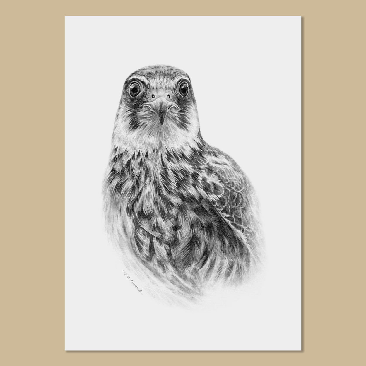 Hobby Art Prints - The Thriving Wild