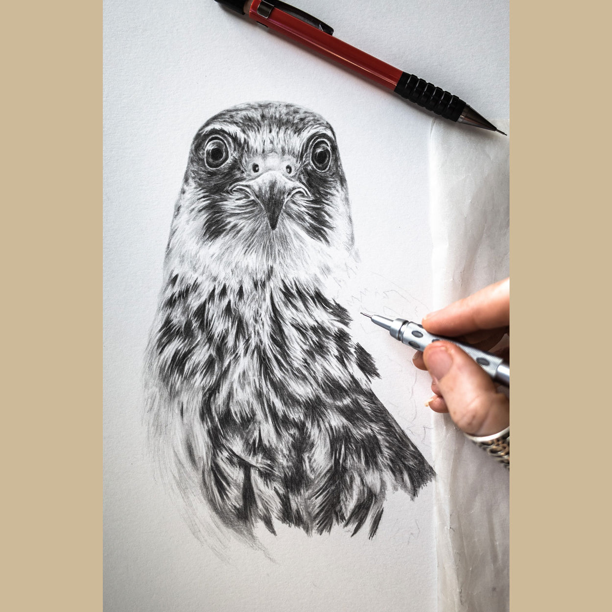 Hobby Pencil Drawing in Progress - The Thriving Wild