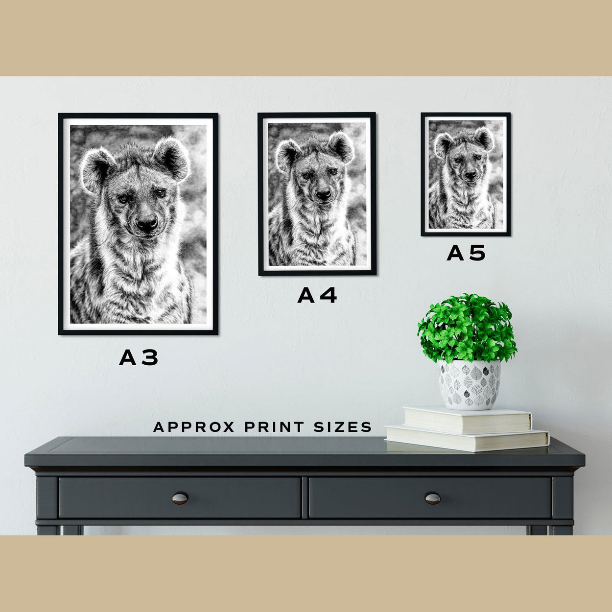 Hyena Prints Size Comparison - The Thriving Wild