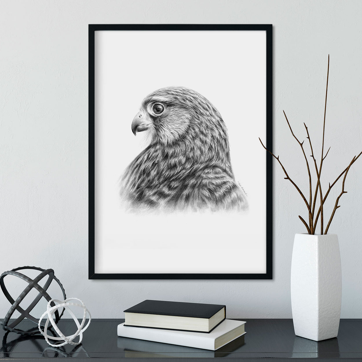 Kestrel Bird of Prey Wall Art in Frame - The Thriving Wild - Jill Dimond