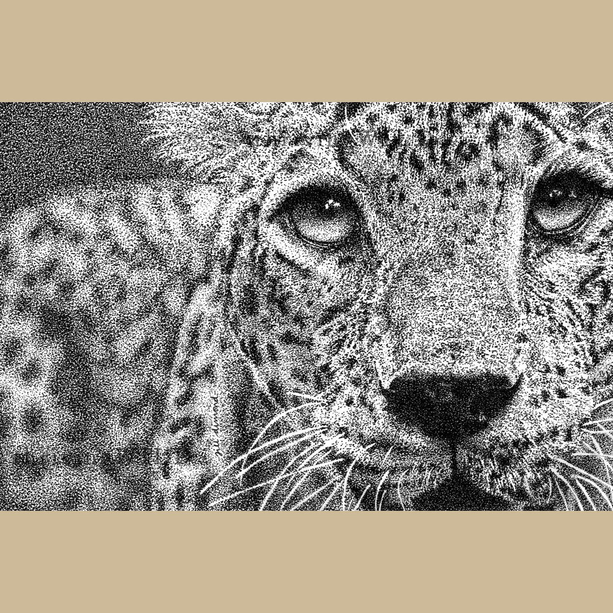 Leopard Pen Drawing Stippling - The Thriving Wild