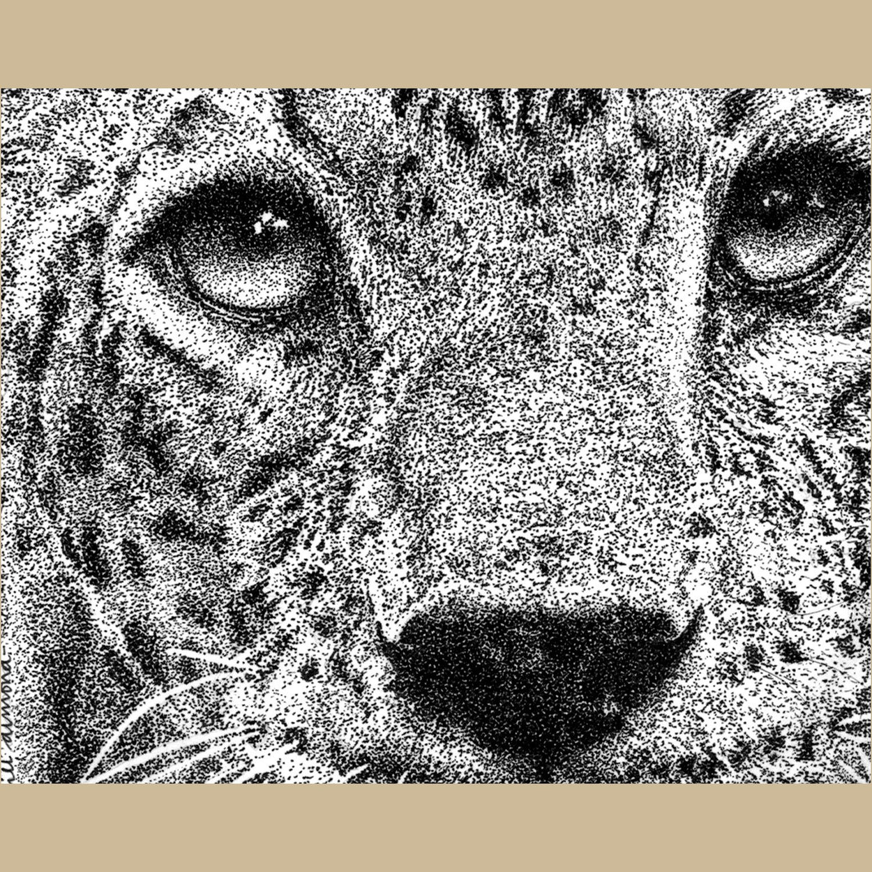 Leopard Pen Stippling Close-Up - The Thriving Wild