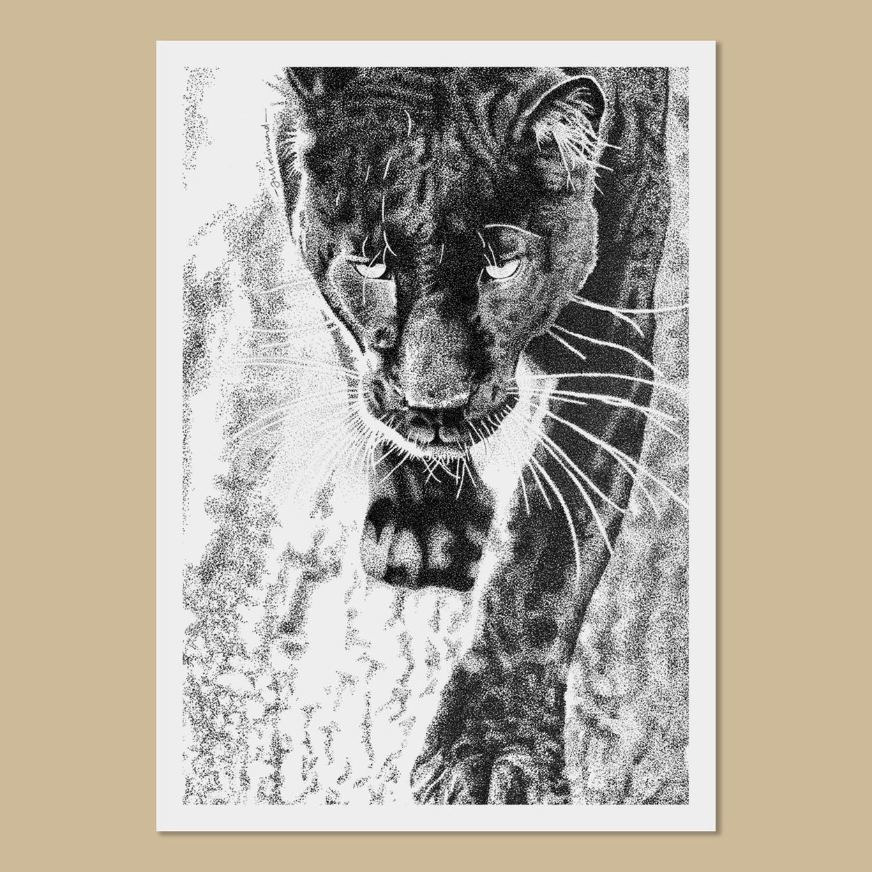 Lettie the Black Leopard Art Prints - The Thriving Wild
