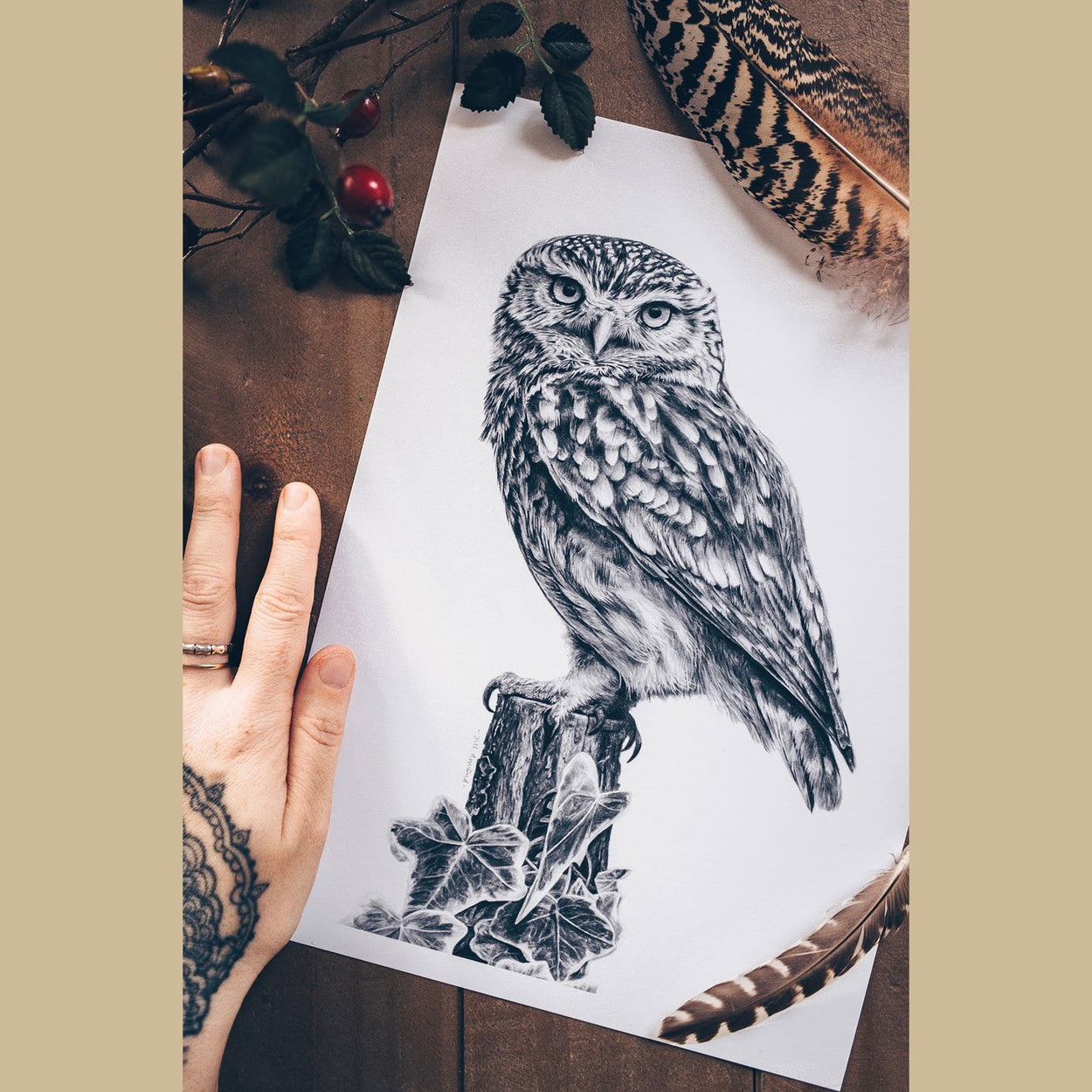 Little Owl Art Print on Table 2 - The Thriving Wild