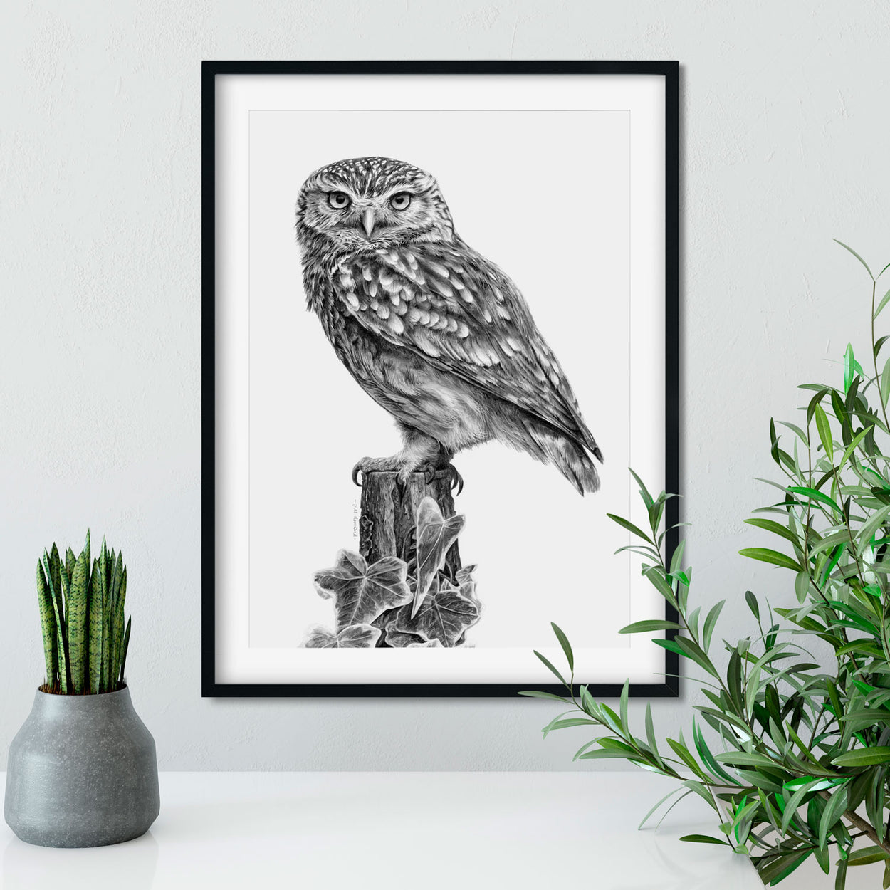 Little Owl Drawing on Wall - The Thriving Wild