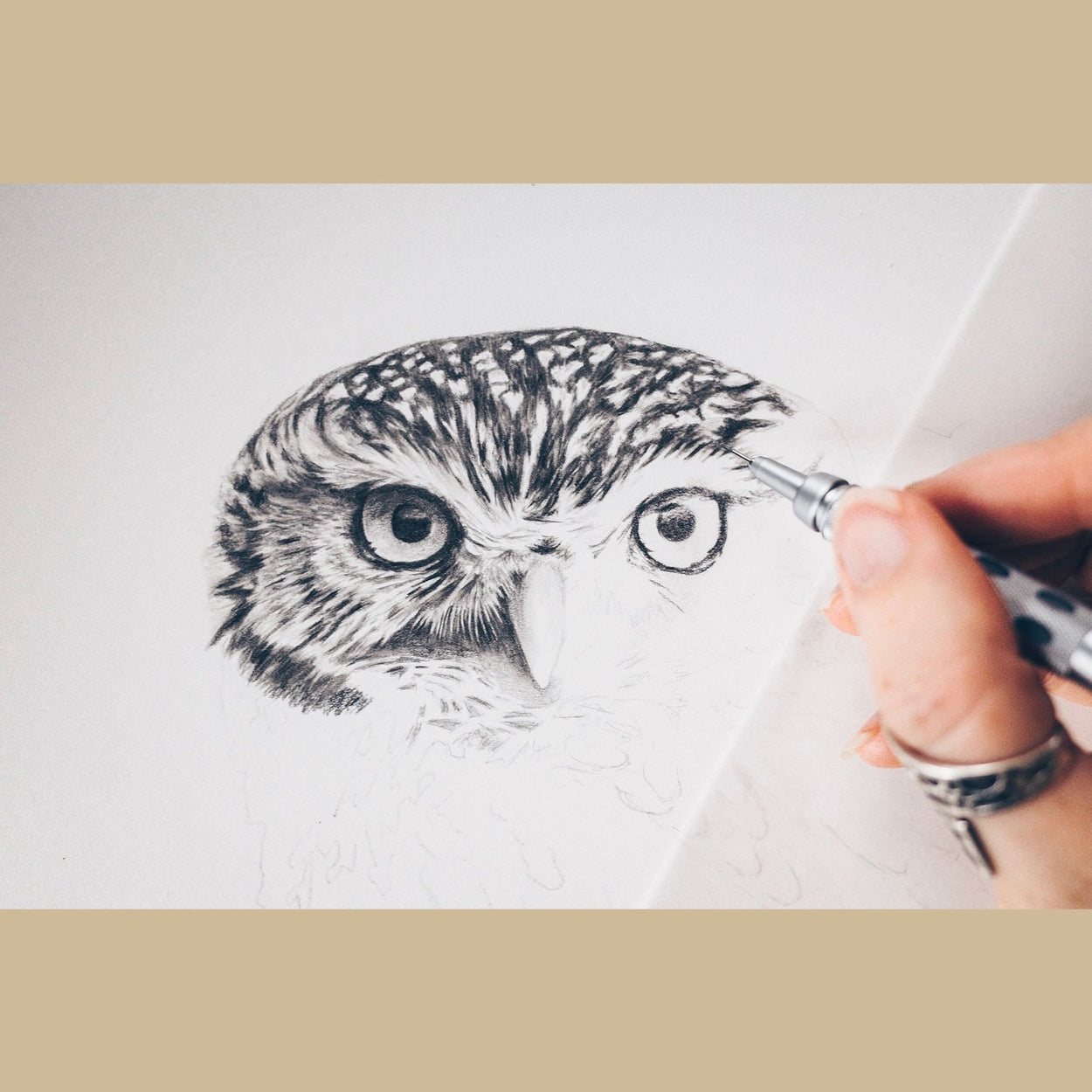 Little Owl Face Drawing Pencil - The Thriving Wild Jill Dimond