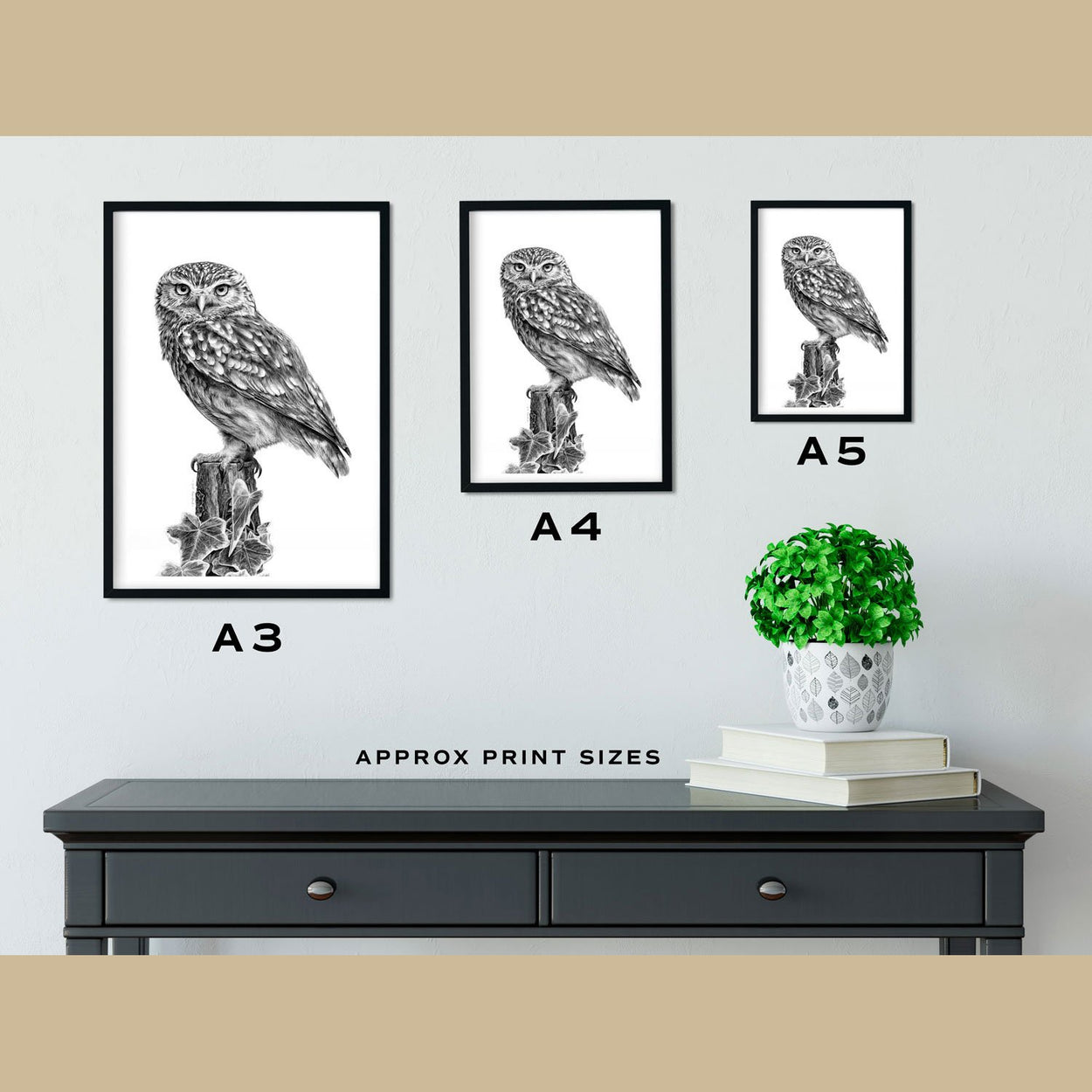 Little Owl Print Size Comparison - The Thriving Wild