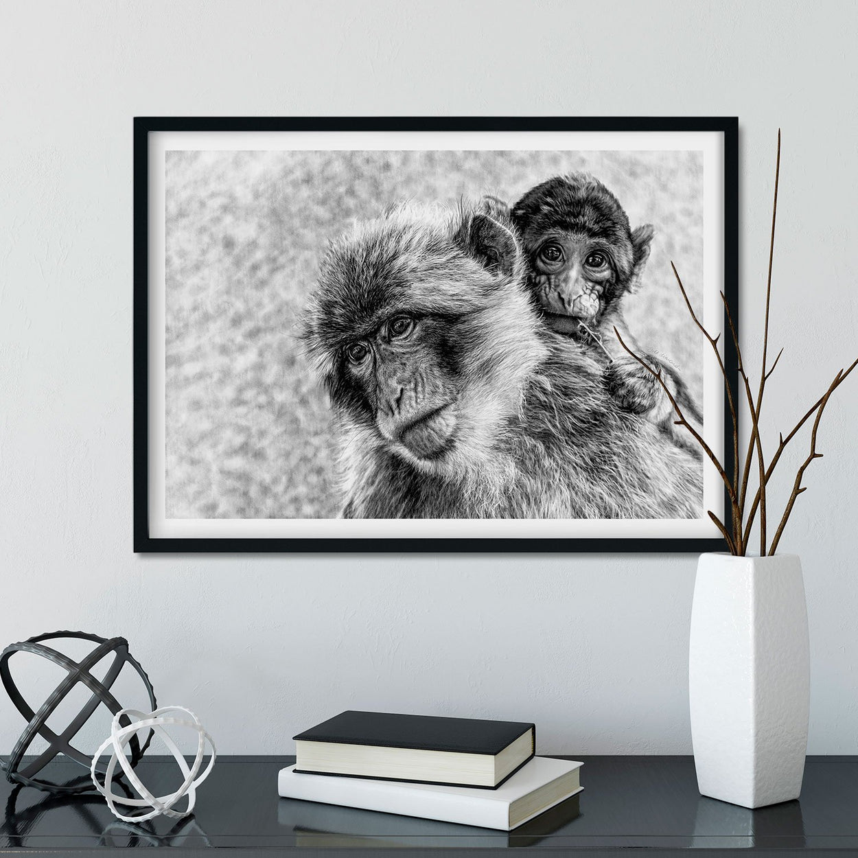 Macaque Drawing Wall Art Frame - The Thriving Wild