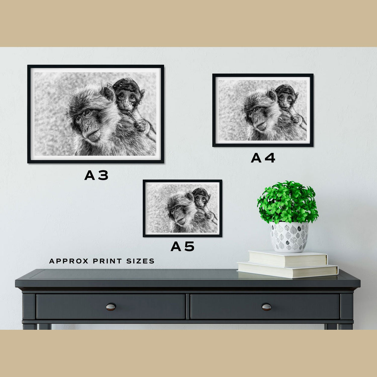 Macaques Prints Size Comparison - The Thriving Wild