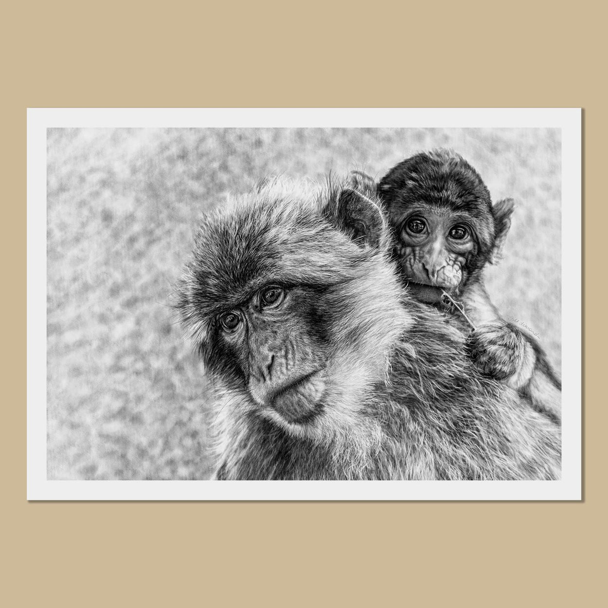 Mama & Baby Macaques Art Prints - The Thriving Wild