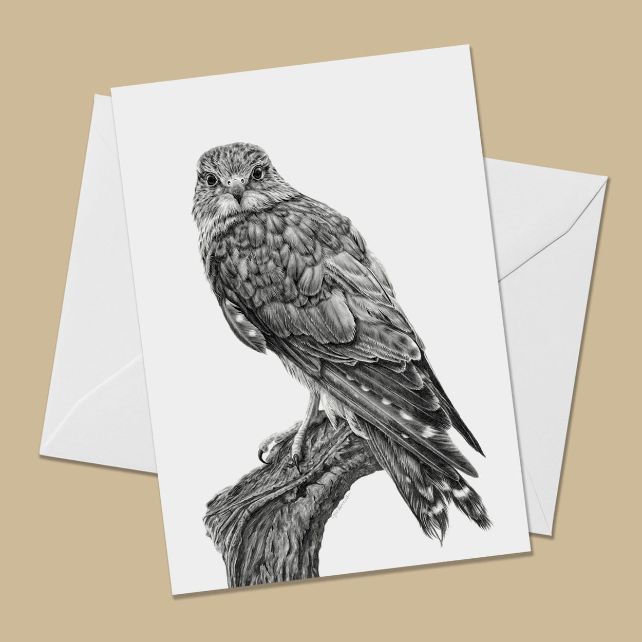 Merlin Greeting Card - The Thriving Wild