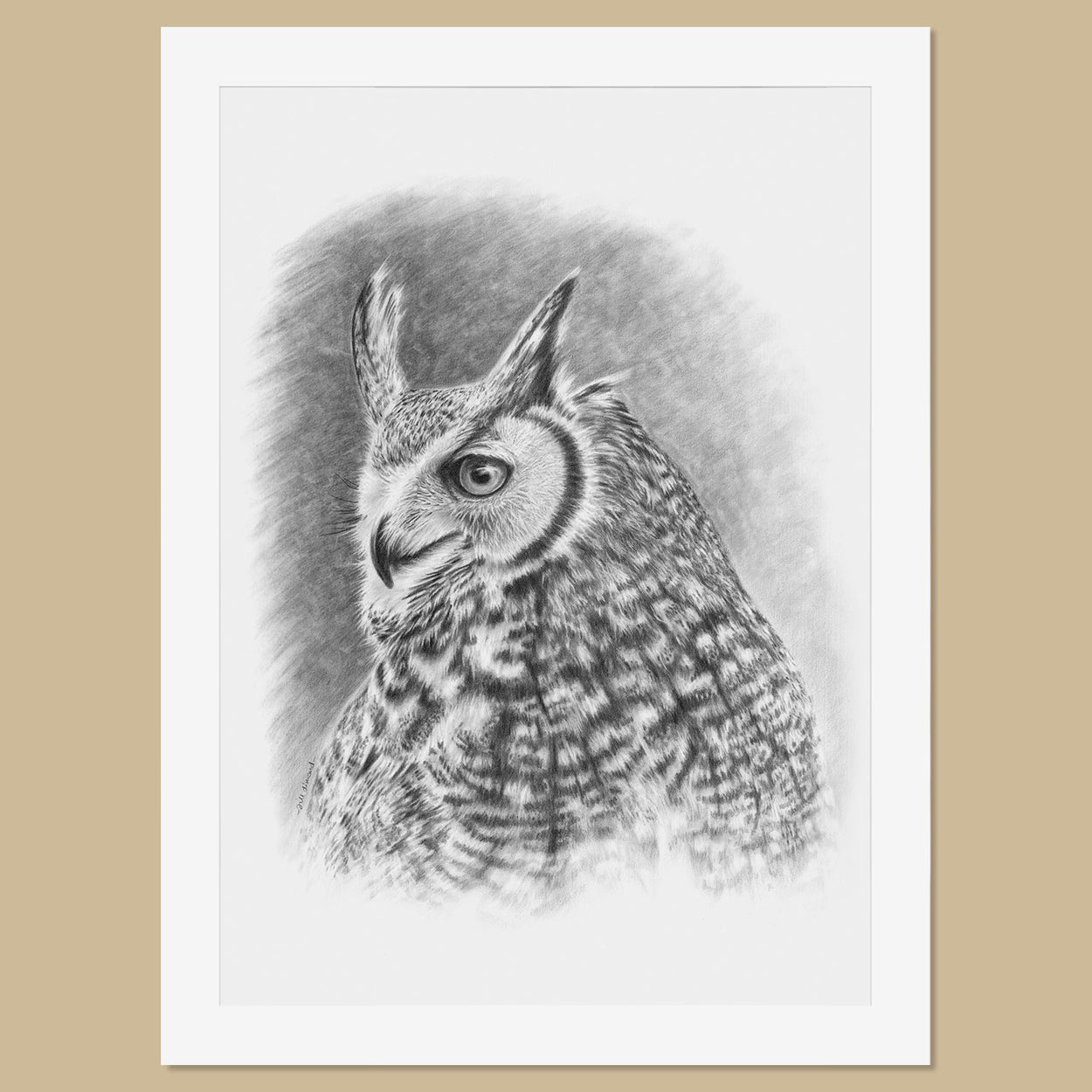 Original Great Horned Owl Pencil Drawing - The Thriving Wild - Jill Dimond