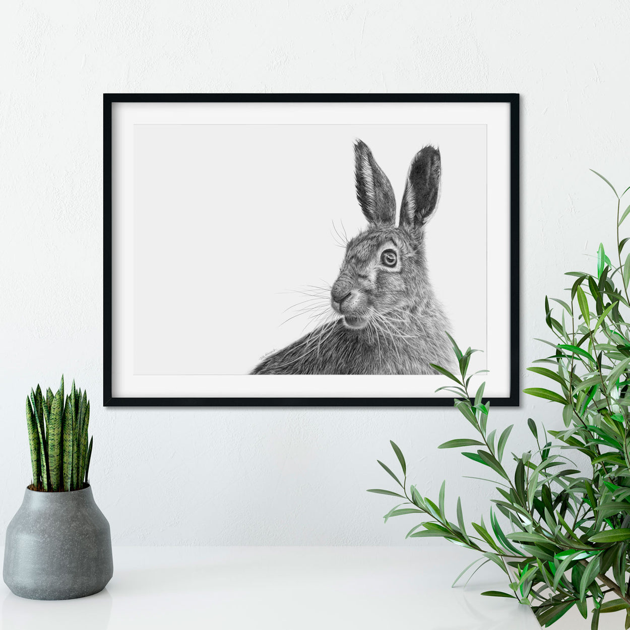 Original Hare Graphite Drawing on Wall - The Thriving Wild