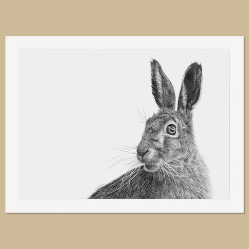 Original Hare Pencil Drawing - The Thriving Wild - Jill Dimond
