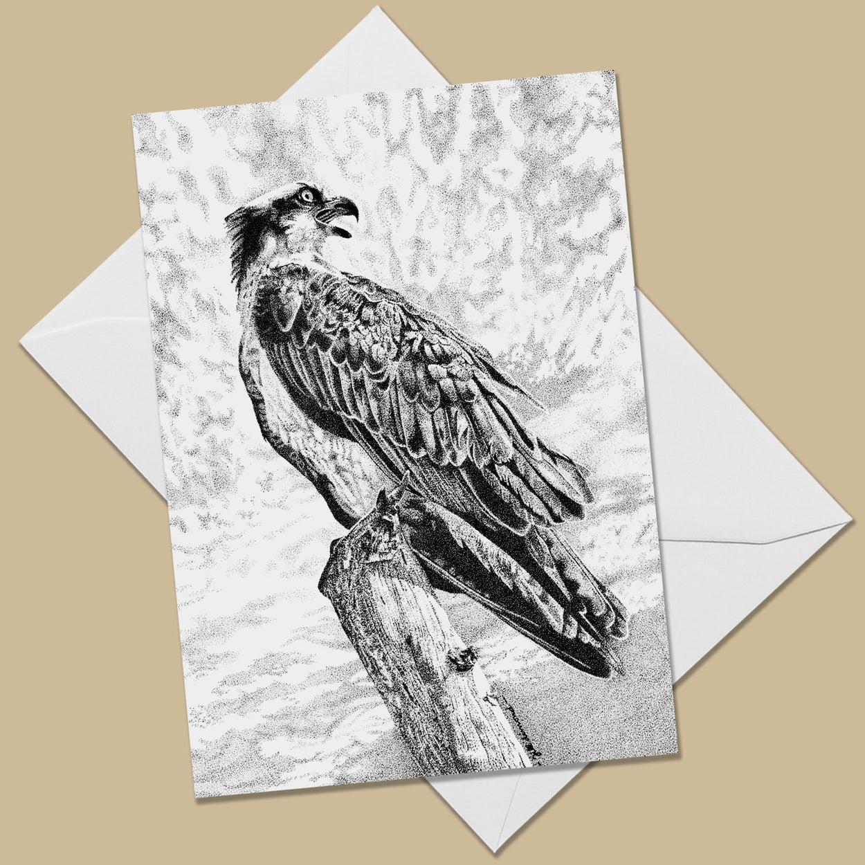Osprey Greeting Card - The Thriving Wild
