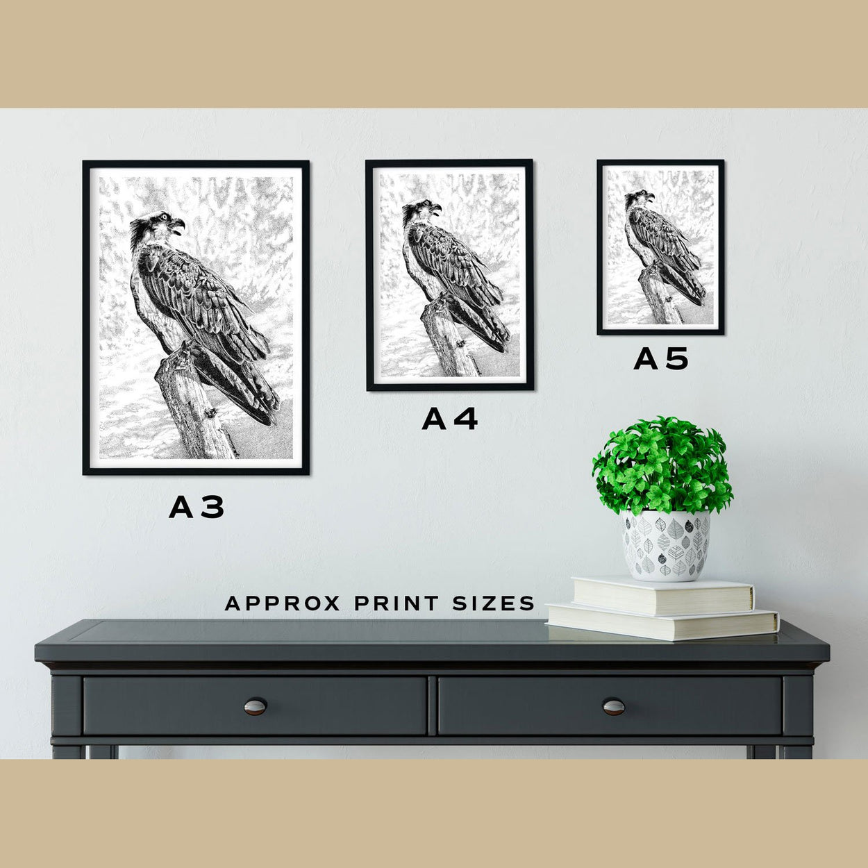 Osprey Prints Size Comparison - The Thriving Wild