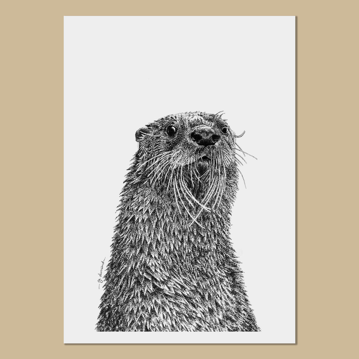 Otter Art Prints - The Thriving Wild