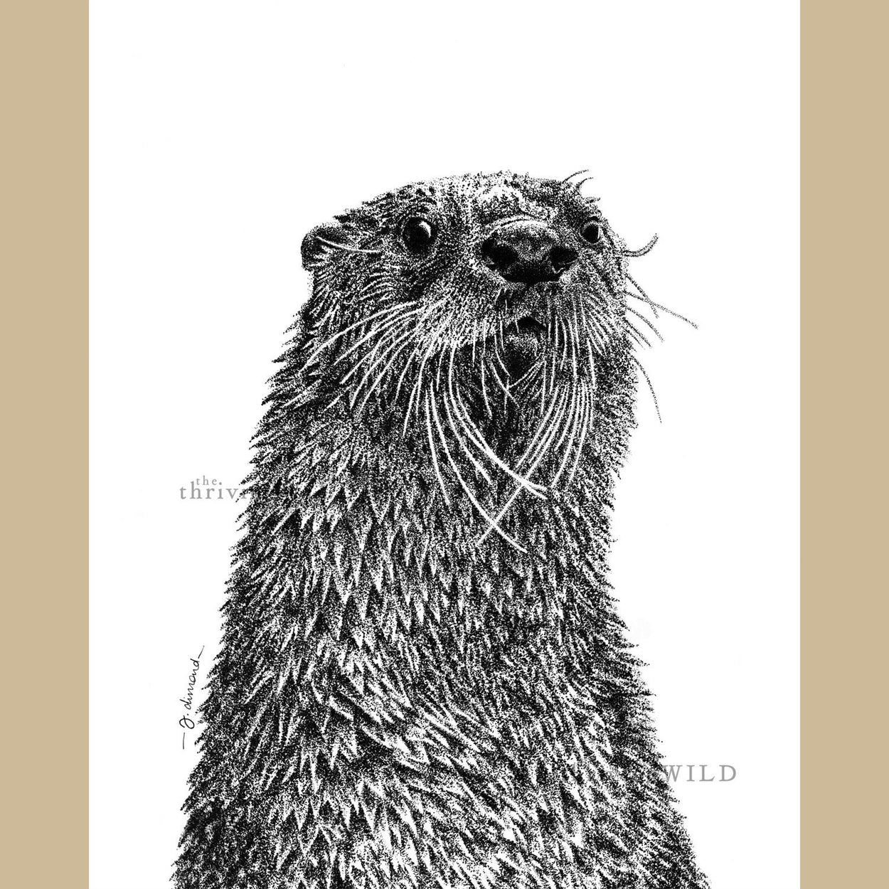 Otter Pen Stippling Drawing - The Thriving Wild