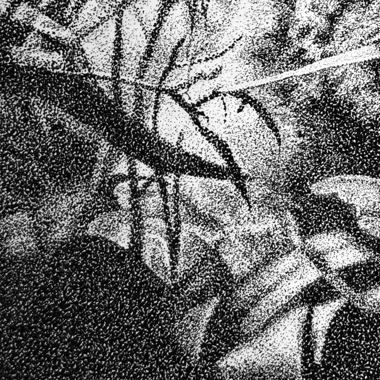 Pen Stippling Close-up - The Thriving Wild