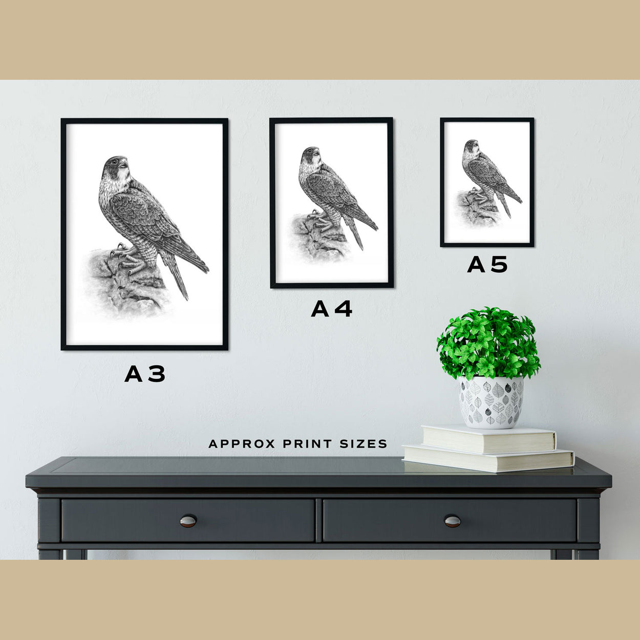 Peregrine Prints Size Comparison - The Thriving Wild